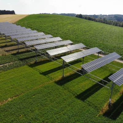 Agrofotowoltaika a bezpieczeństwo żywnościowe